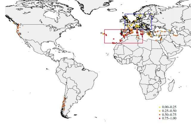 Adaptive genetic markers identify the origins and dispersal of invasive species