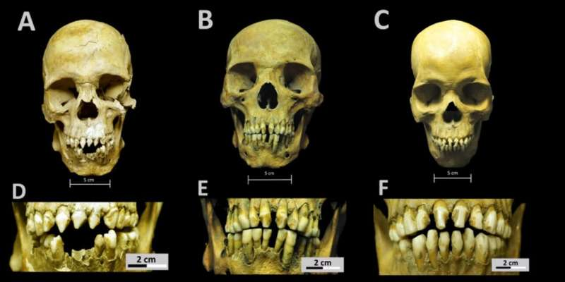 African skeletons from early colonial Mexico tell the story of first-generation slaves