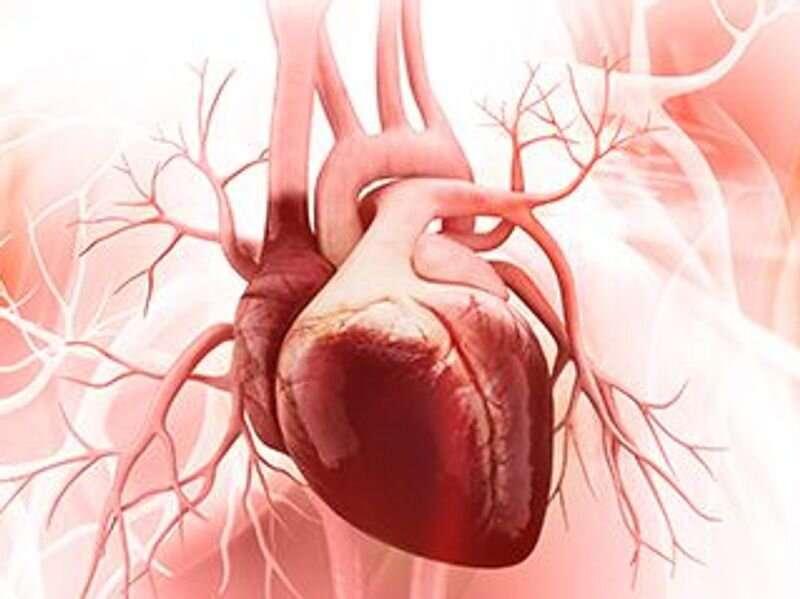 AHA/ACC urge shared decisions in hypertrophic cardiomyopathy