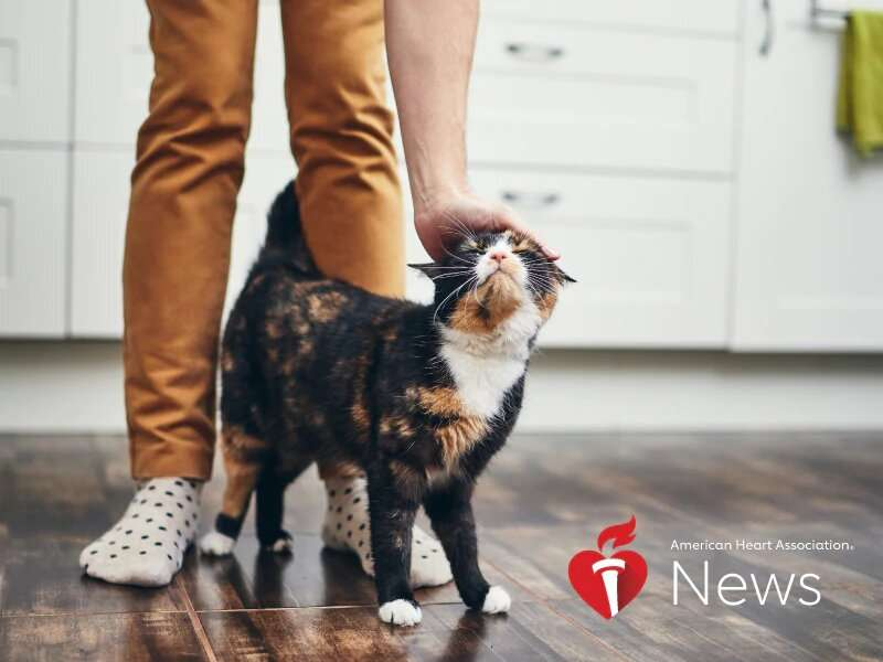 AHA news: A silver lining for foster, adopted pets – and their people – during coronavirus pandemic