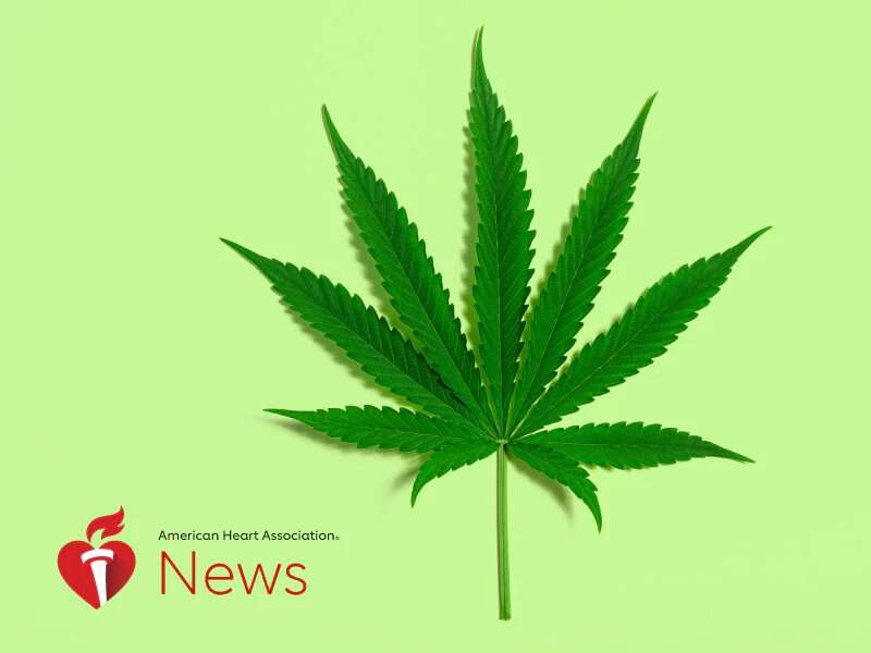 AHA news: as marijuana use grows, researchers want to know how it affects the heart