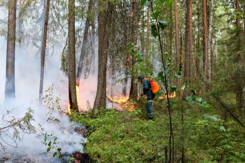 A heatwave caused by changing climate in northern Siberia has contributed to the severity of fires this year