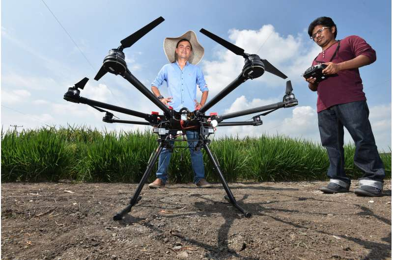 AI goes underground: root crop growth predicted with drone imagery