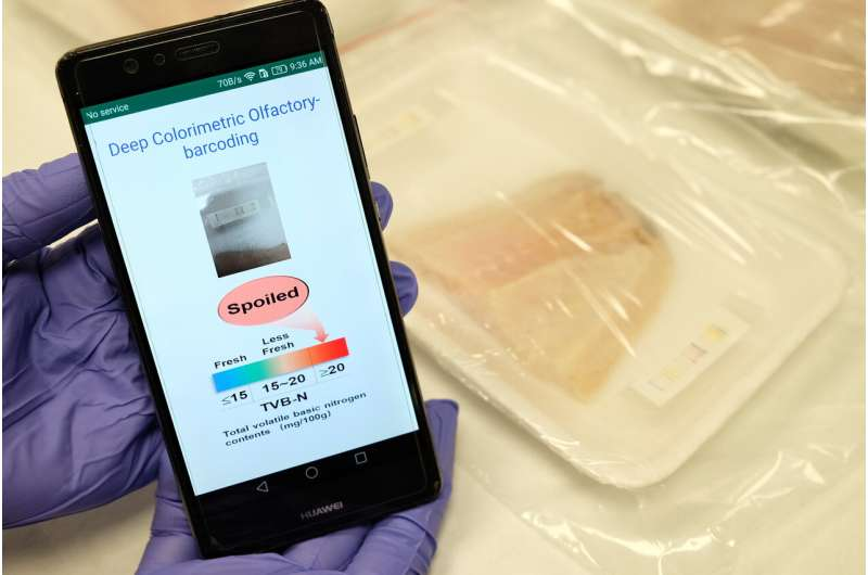 AI-powered 'electronic nose' to sniff out meat freshness