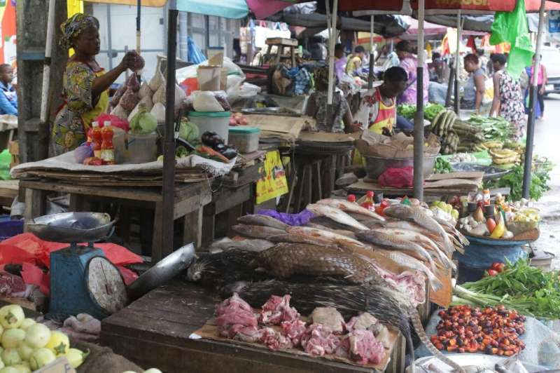 A market in Gabon's capital where bushmeat is sold, including pangolins, whose popularity has plummeted since it was blamed for