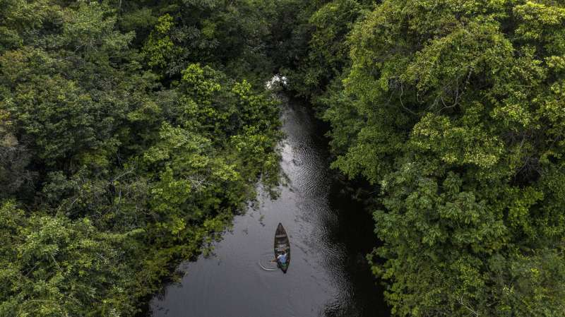 Amazon study shows big conservation gains possible for imperilled freshwater ecosystems
