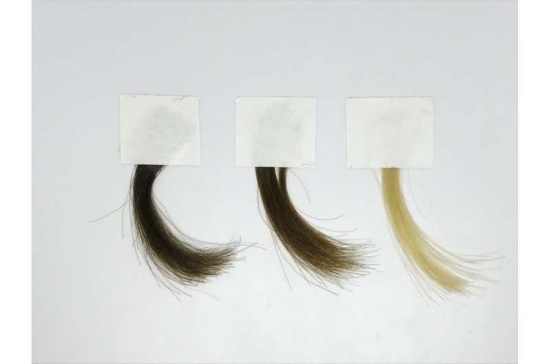 A milder hair dye based on synthetic melanin