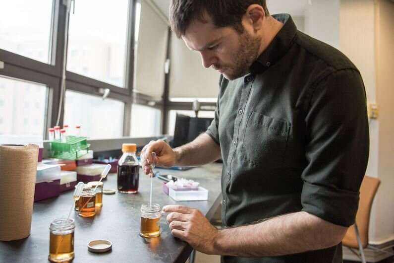 An artificial 'tongue' of gold to taste maple syrup