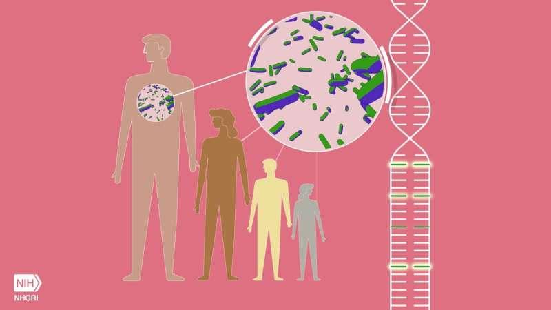Ancient disease may increase resilience to bubonic plague