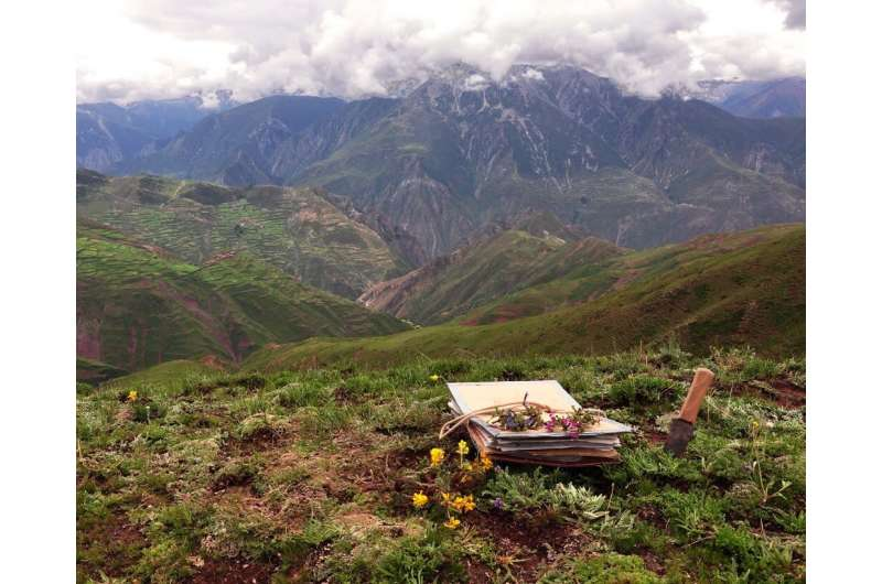 Ancient mountain formation and monsoons helped create a modern biodiversity hotspot