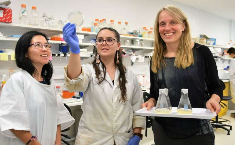 'Ancient' system unlocks cancer secrets