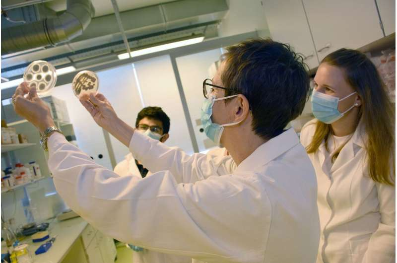 A new way of combating fungal infections