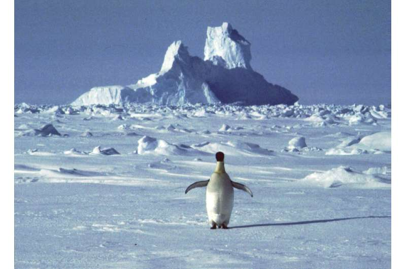 Antarctica appears to have broken a heat record