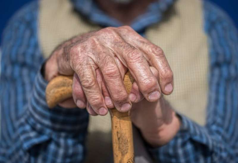 'Anti-ageing' protein shown to slow cell growth is key in longevity – newresearch