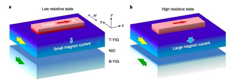 A platinum and yttrium iron garnet-based structure produces a new magnetoresistance effect