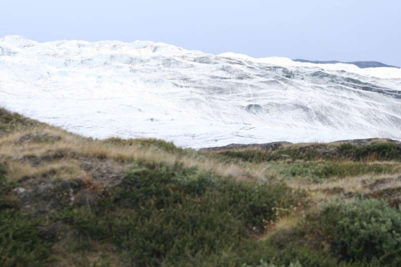 As Sea Ice Disappears, A Greener and Browner Arctic Emerges