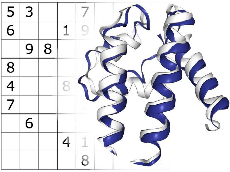 A Sudoku-solving algorithm holds promise for protein medicine