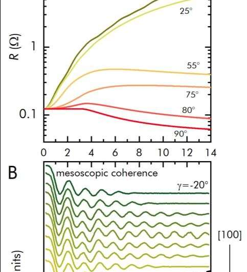 """A surprising quantum effect observed in a """"large"""" object"""
