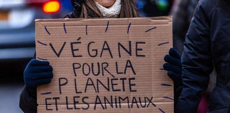 As vegan activism grows, politicians aim to protect agri-business, restaurateurs