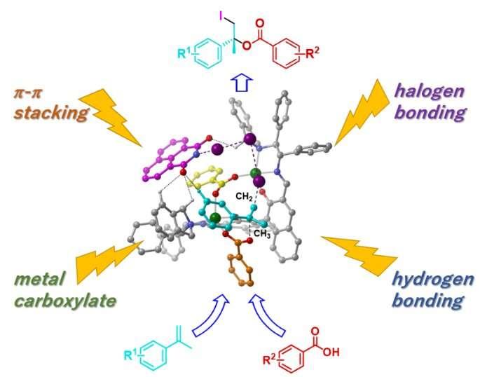 Asymmetric iodoesterification of simple alkenes by concerto catalyst