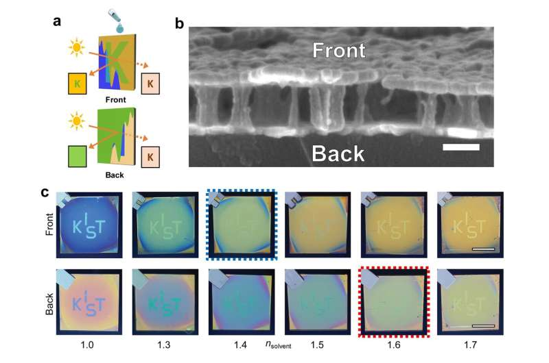Asymmetric optical camouflage: Tuneable reflective color accompanied by optical Janus effect