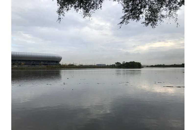 Bacteria can defuse dangerous chemical in Rassaic River