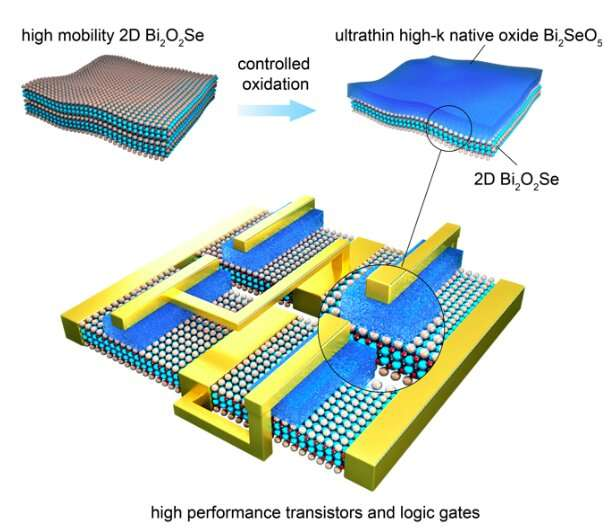 Bi2SeO5: A new native oxide high-k gate dielectric for fabricating 2D electronics