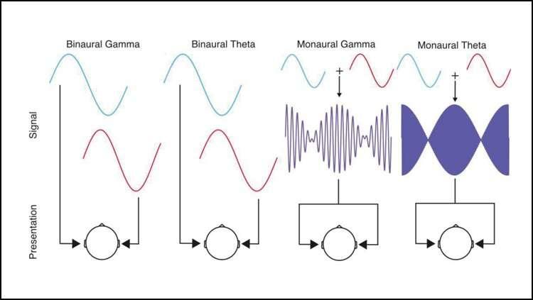 Binaural beats synchronize brain activity, don't affect mood
