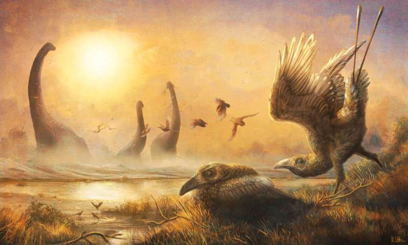 Bird with tall, sickle-shaped beak reveals hidden diversity during the age of dinosaurs