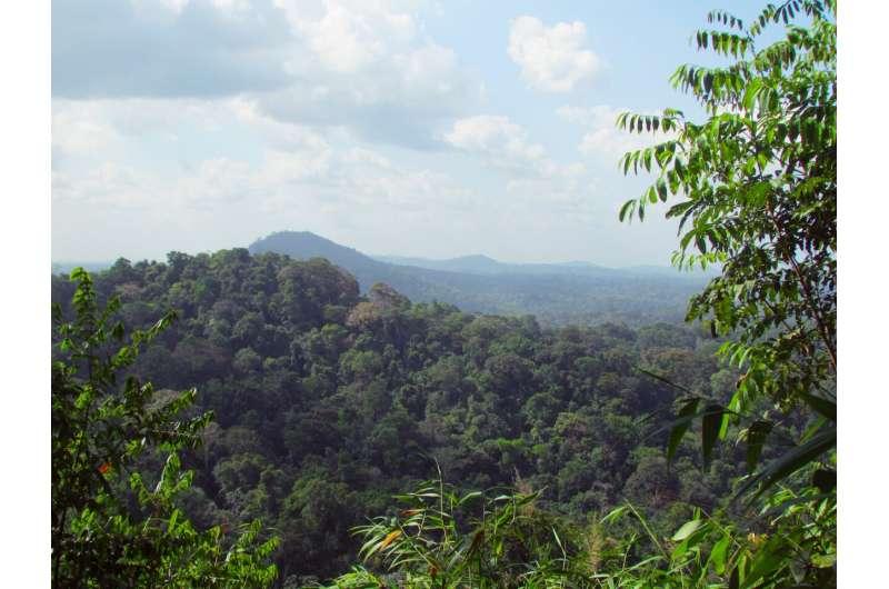 Bolsonaro's Indigenous land mining policy a billion-dollar backfire