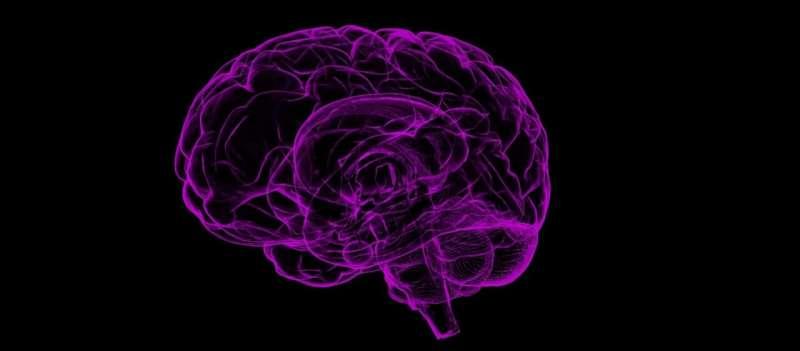 Brain measurements reveal success of public health campaigns