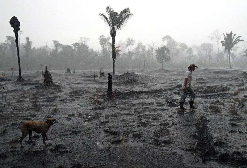 Brazilian farmer Helio Lombardo Do Santos walks through a burned area of the Amazon rainforest near Porto Velho, Rondonia state