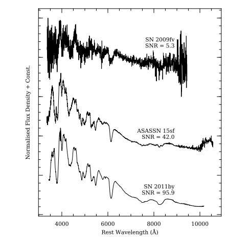 BSNIP project releases spectra of more than 200 Type Ia supernovae