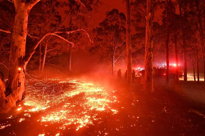 Burning embers cover the ground as firefighters battle against bushfires around the town of Nowra