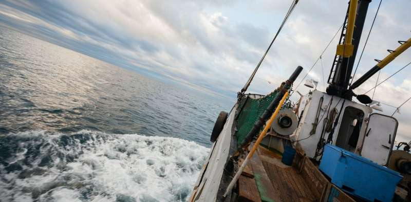 Catch-22: technology can help solve fishing's environmental issues – but risks swapping one problem for another