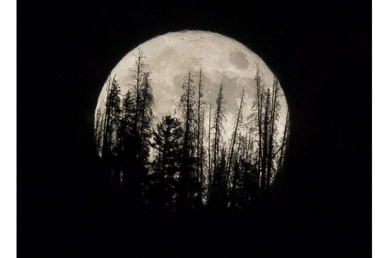 Catch this week's supermoon, biggest and brightest of year