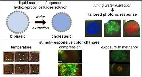 Cellulose: an ever-present material with remarkable properties