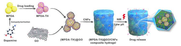 Cellulose nanofibril-based encapsulation structure to control drug release