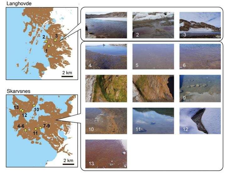 Clarification of microbial community structures around Antarctic lakes