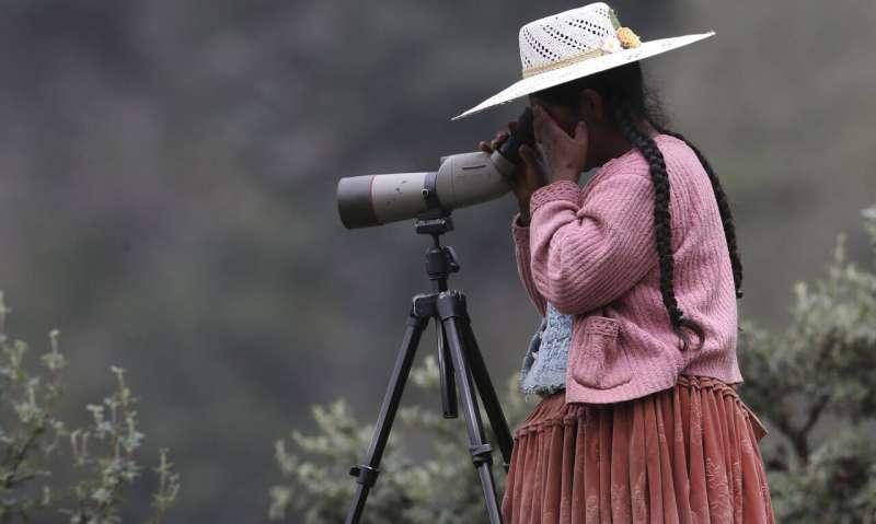 Community science birding data does not yet capture global bird trends