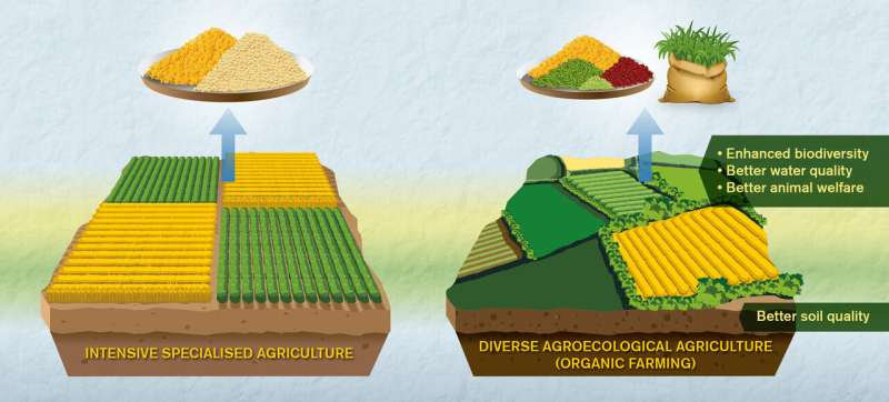 Comparisons of organic and conventional agriculture need to be better, say researchers