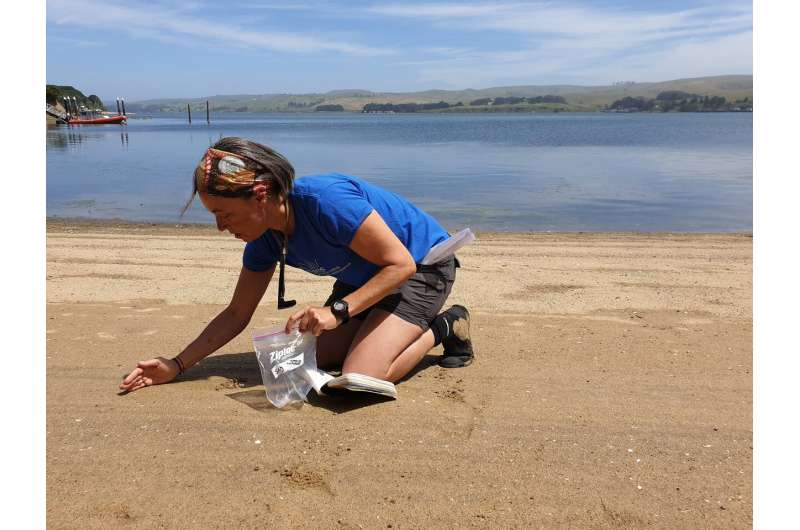 Could we run out of sand? Scientists adjust how grains are measured