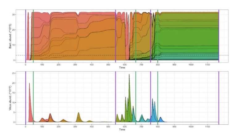 CRISPR-induced immune diversification in host-virus populations