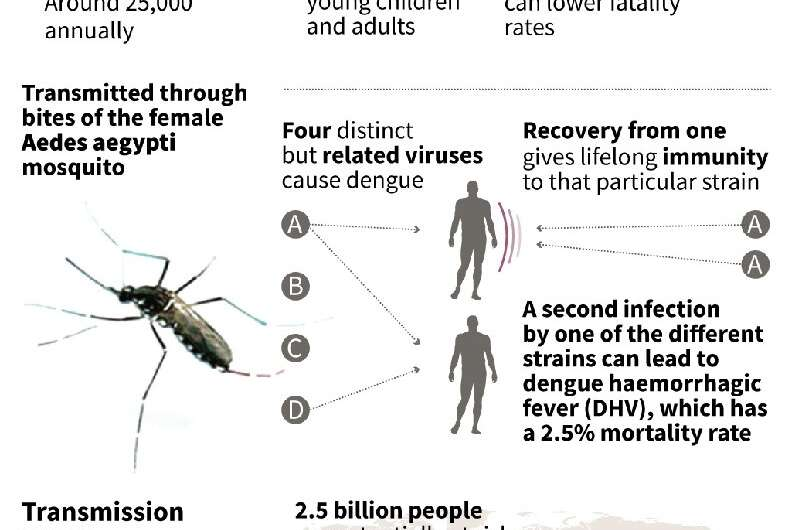Dengue fever is the world's most common mosquito-borne virus