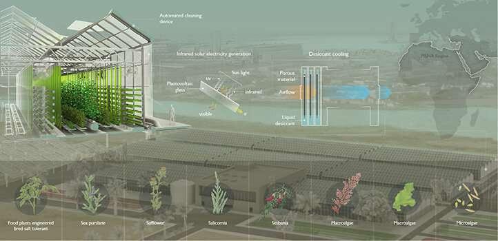 Desert greenhouses offer growth opportunities