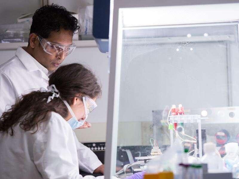 Designer peptides show potential for blocking viruses, encourage future study