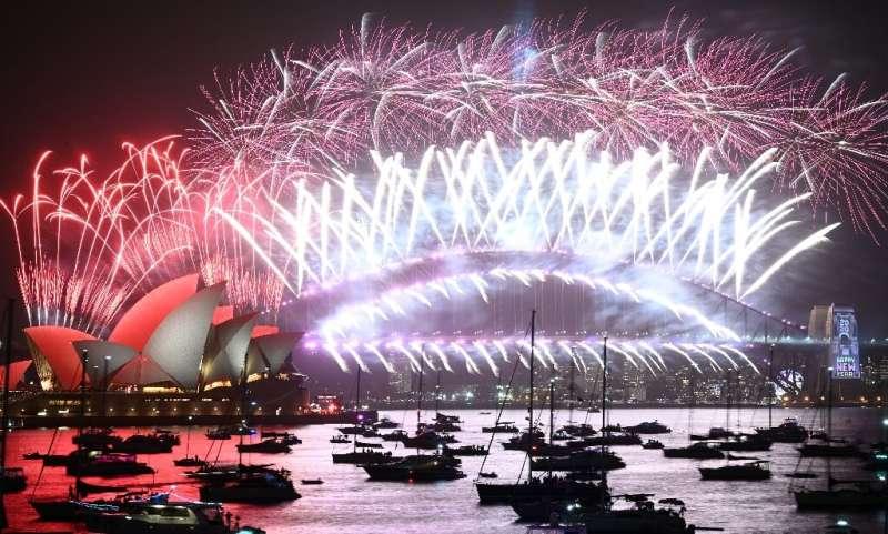 Despite criticism, a multi-million dollar firework display went ahead in Sydney on New Year's Eve