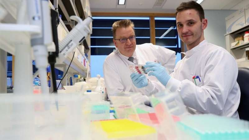 **Discovery of new T-cell raises prospect of 'universal' cancer therapy