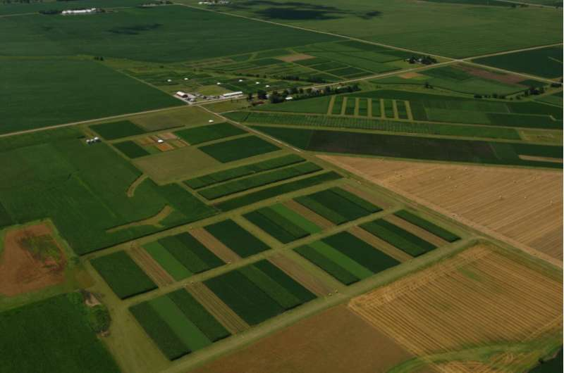 Diverse cropping systems don't increase carbon storage compared to corn-soybean rotations