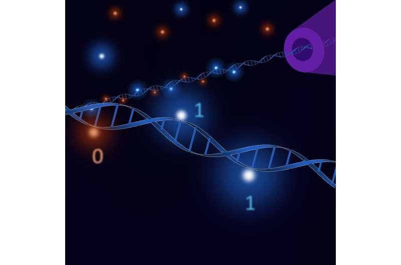 DNA lego bricks enable fast re-writable data storage